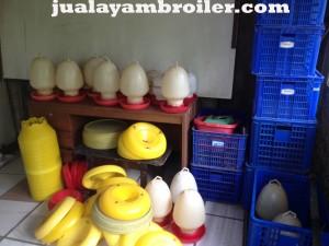 Jual Ayam Broiler Lebak Bulus Jakarta Selatan