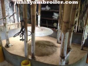 Jual Ayam Broiler di Lebak Bulus Jakarta Selatan
