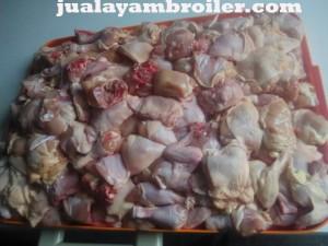 Jual Ayam Broiler Babakan Madang Bogor