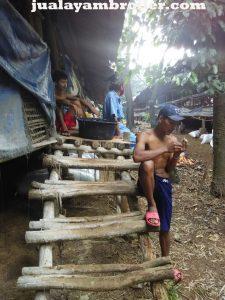 Jual Ayam Broiler di UKI Jakarta Timur