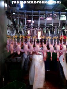 Jual Ayam Karkas di Pasar Rebo Jakarta Timur