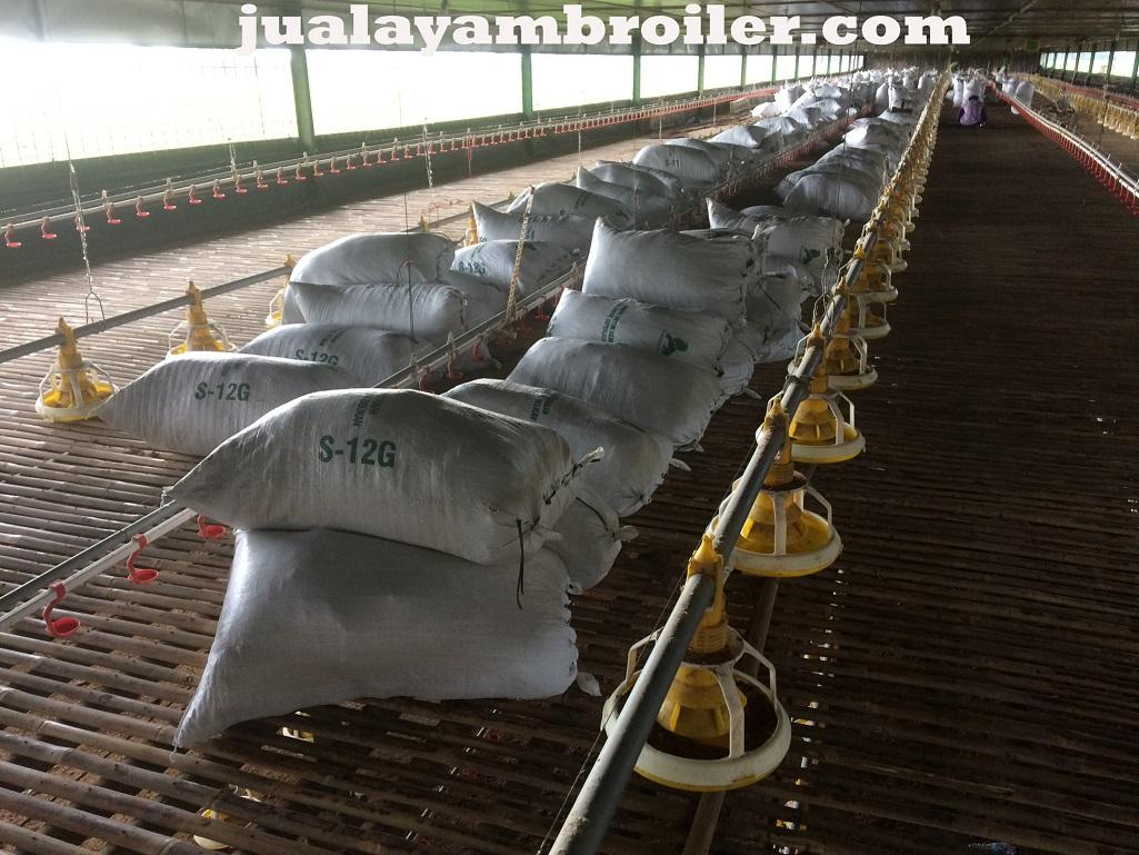 Jual Ayam Karkas di Kramat Jakarta Pusat