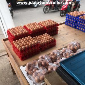 Jual Ayam Karkas di Jalan Marna Putra Jatibening Bekasi