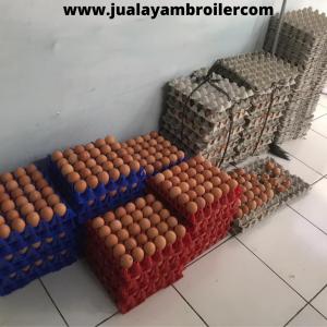 Jual Ayam Karkas di Jalan Duren Jatibening Bekasi